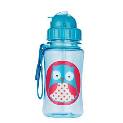 Skip Hop Straw Cup, Toddler Transition Sippy Cup, Owl